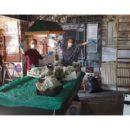 The Plough are doing community veg boxes