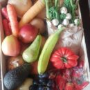 Community crisis veg boxes